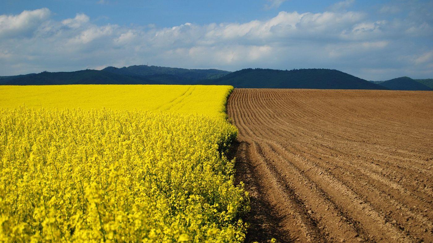 Albania acquistare terreni agricoli in alcune zone costa for 3 costo del garage per metro quadrato